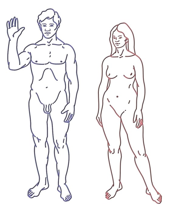 1000px-Pioneer_plaque_humans.svg