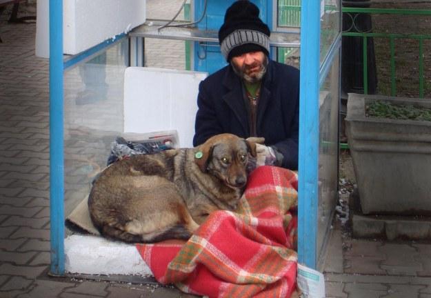Hemlös man med hund